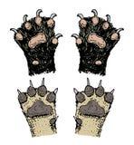 Tatzen von Tieren oder Abdrücke und wild lebende Tiere Hände des Hundes, des Bären, der Katze und des Hufs Inländisch oder Bauern lizenzfreie abbildung