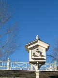 Taube auf einem Birdhouse Stockfotografie