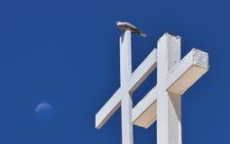 Taube auf Kreuz Lizenzfreie Stockfotografie