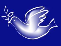 Taube des Friedens Stockfoto