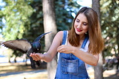 Taube, die auf der Hand eines schönen Mädchens sitzt Stockfoto