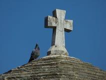 Taube, die auf eine Oberseite eines Turms nahe einem Kreuz sitzt Kotor alte Stadt, Montenegro lizenzfreies stockfoto