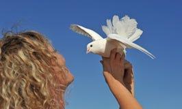 Taube und blondes Mädchen Lizenzfreies Stockbild