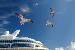 Tauben über einem Kreuzschiff Lizenzfreie Stockbilder