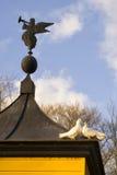 Tauben auf einem Taubenschlag Stockfotos