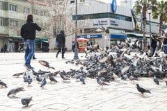 Tauben auf Konak quadrieren im alten Teil von Izmir-Stadt Stockfotos