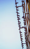 Tauben auf Metallbau Stockfotografie
