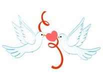 Tauben der Liebe Stockfotografie