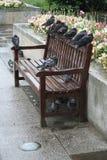 Tauben, die auf einer Bank roosting sind Stockbild