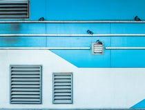 Tauben, die an der grünen Wand, Luftbelüftung, Straßenverschluß festhalten Stockbild