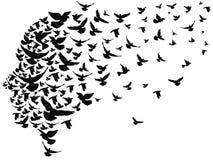 Tauben, die weg mit menschlichem Kopf fliegen stock abbildung
