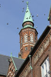 Tauben lebeni Rathaus Stockfotografie