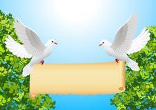 Tauben mit Fahne Lizenzfreie Stockfotografie