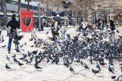 Tauben und einfache Leute auf Konak-Quadrat Lizenzfreie Stockbilder