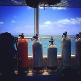 Tauchen das Great Barrier Reef Lizenzfreie Stockbilder