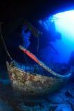 Tauchen im Roten Meer Lizenzfreie Stockfotos