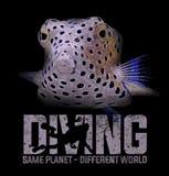Tauchende Taucherunterwasseratemgerät-Kastenfische - T-Shirt Entwurf stockfotos