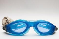 Tauchensschutzbrillen und -shell stockfotos