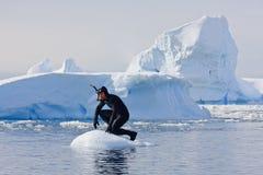 Taucher auf dem Eis Stockfotografie
