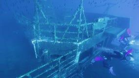 Taucher, die Zenobia-Schiffbruch erforschen stock footage