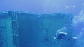 Taucher, die Zenobia-Schiffbruch erforschen stock video