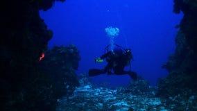 Taucher, die zusammen um Riff schwimmen stock footage