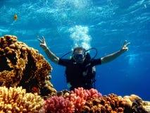 Taucher im Meer lizenzfreie stockfotos