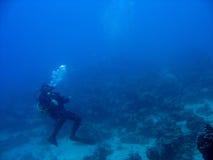Taucher im tiefen Blau Stockbild