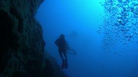 Taucher Swim über Coral Reefs stock footage
