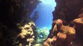 Taucher-Swim Through Underwater-Höhle stock footage