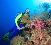 Taucher Unterwasser Lizenzfreies Stockfoto
