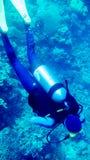 Taucher von oben genanntem im blauen Meer mit Korallen lizenzfreies stockfoto
