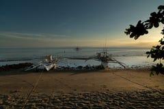 Taucherboote, Donsol - Philippinen stockfotos