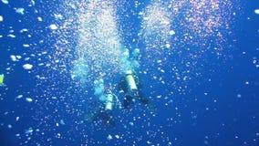 Taucherschwimmen an der Tiefe Rotes Meer stock video footage