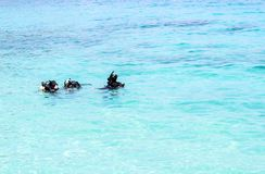 Tauchlektion im Meer lizenzfreies stockbild