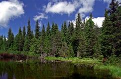 Taul dintre brazi. From Retezat National Park Stock Photo