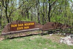 Taum Sauk bergdelstatspark Missouri Royaltyfria Bilder