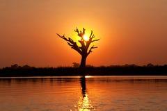 Taungthaman湖在Amarapura,缅甸 免版税图库摄影