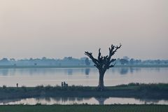 早晨在Amarapura,缅甸 库存图片