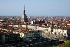 Taupe de Turin Image stock