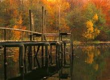 Taupe en bois Photo libre de droits