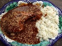 Taupe savoureuse de poulet de Puebla Images stock