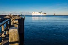 Taupe sur la côte de mer baltique dans Warnemuende, Allemagne Images libres de droits