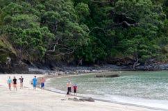 Taupo Bay - New Zealand Stock Image
