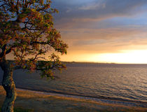 taupo zealand солнца озера вечера новое стоковые фото