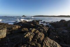 Tauranga fjärd, västkusten, Nya Zeeland Royaltyfria Bilder