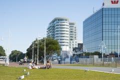 TAuranga Nowa Zelandia. Zdjęcia Royalty Free