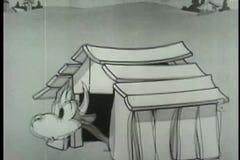 Taureau de danse avec le tablier banque de vidéos