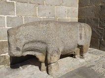 Taureau en pierre à Avila, Castille y Léon, Espagne image libre de droits