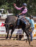 Taureau Rider Success Photographie stock